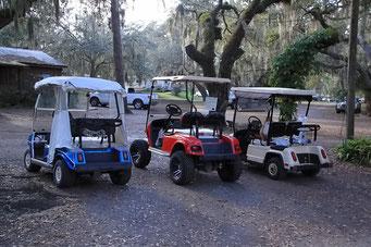 Golf-Carts gehören ebenfalls zum Standard - kein Lärm - Lake Kissimmee