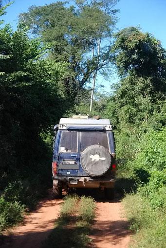 Fahrt durch den Dschungel an die Laguna Blanca