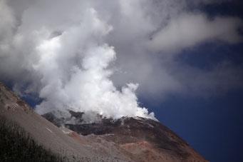 Pumalin Park - Volcano Chaiten