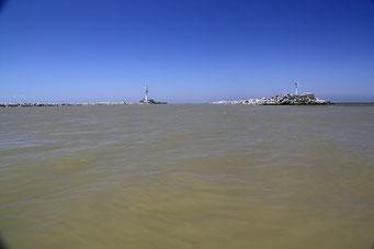 Die Donaumündung