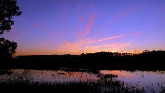 Schöne Abendstimmung auf Cedar Island, NC, USA