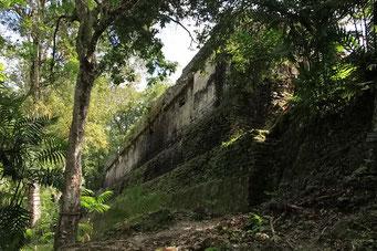 Palast, Tikal