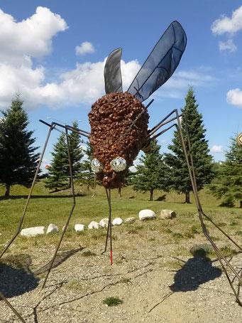 Mücken hat es viele, zum Glück nicht so grosse, Alaska