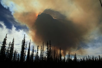 Bushfire, Yellowknife Highway, Kanada