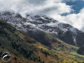 Pico rojo y Pic d' Aillary