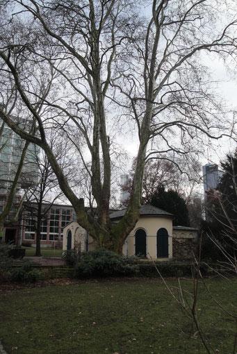 Auch hier sind die beiden Türme der Deutschen Bank plötzlich verschwunden (Ergänzungsbild fehlt).