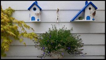 Details en Sfeer van Nestkastjes in Griekse stijl _29
