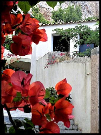 Houten Nestkastje voor Pindakaas pot , Nestkastje, thema, Grieks stijl Vogelhuisje bouwen, vogelhuisje pindakaas pot, huisje Grieks stijl_26