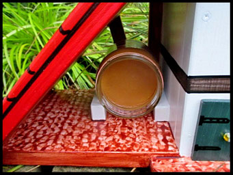 Houten Nestkastje voor Pindakaas pot , Nestkastje, thema, Vogelhuisje bouwen, vogelhuisje pindakaas pot_5