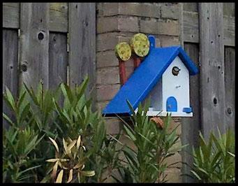 Houten Nestkastje voor Pindakaas pot , Nestkastje, thema, Grieks stijl Vogelhuisje bouwen, vogelhuisje pindakaas pot, huisje Grieks stijl_36