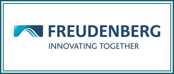 FREUDENBERG Freudenberg Sealing Technologies Change Management - Konfliktbewältigung