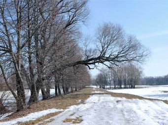 Все близлежайшие территории усадьбы уже отмечены столбиками частная собственность