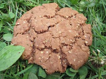 Der ultimative Riesen-Mega-Monster-Cookie!