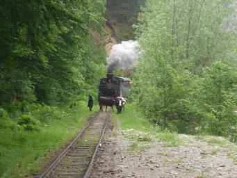 Letzte Waldbahn Europas.