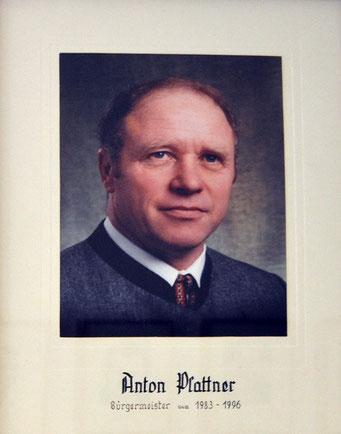 Anton Plattner 1983 - 1996
