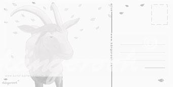 Postkarte Rückseite: Ziege Elise / kängorooh / 2018