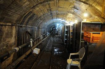 坑道内部の様子。この場所ではシイタケが栽培されています。