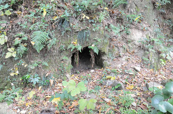 八代神社に残る地下壕。神社の御神宝を守るために、島の小学生が掘ったと言われています。