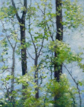 Bäume 60x80