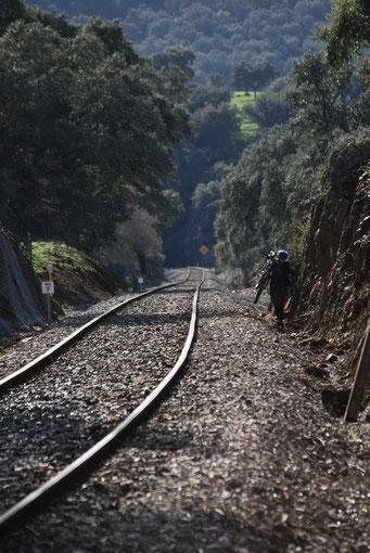 Ruta en bici por la Sierra Norte