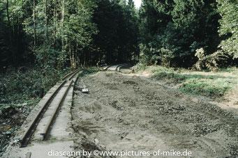 zwischen Schlottwitz und Mühlbach