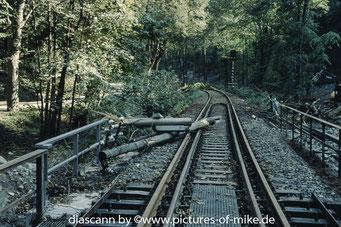 zwischen Mühlbach und Burkardswalde-Maxen