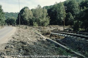 unterhalb des Bahnhof Burkardswalde - Maxen