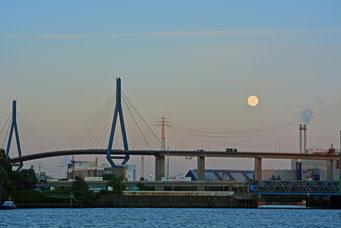 Köhlbrandbrücke am 12.06.2014