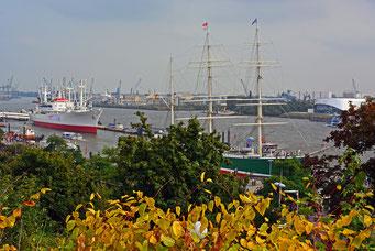 Zwei der vielen Hamburger Wahrzeichen verstecken sich hinter dem ersten Herbstlaub 2014