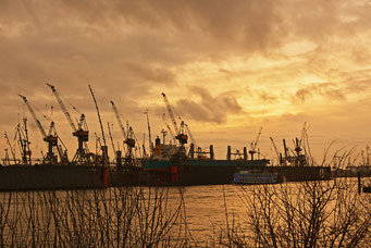 Blick über die Elbe zum Dock 11