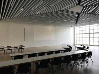 Projekt in Hagen: Hörsaal Wandvertäfelung aus Akustik-Holzelementen