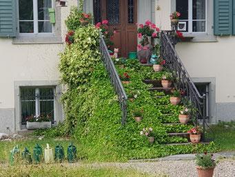 Bea Winterberg, Dorfstrasse Bauma, begrünte Treppe