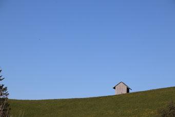 Bruno Kleeb, Sternenberg Scheune unter blauem Himmel