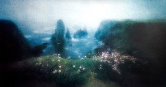 Aiguilles de Port Coton, 2005, quadrichromie, procédé FRESSON, Format image 63x85 cm