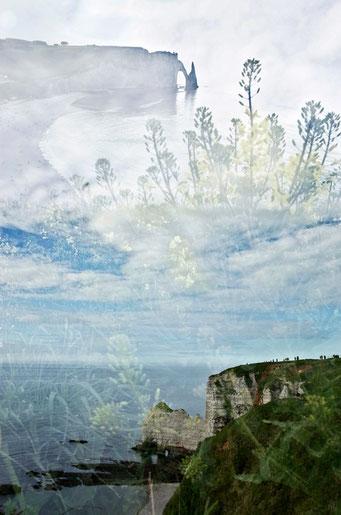 Étretat. Choux des cieux © Annick Maroussy Amy
