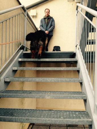 Schnurstraks die Treppe rauf  - Naomi