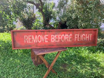 RAS-003 Remove Before Flight