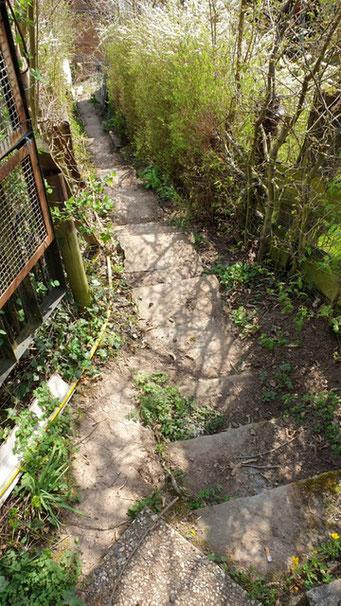 Hier mein Bausatzprojekt: 30 Säcke Beton, Sand, Steine, Stahl und gute Schuhe um die Säcke die 30m Treppenwege zu schleppen 😂