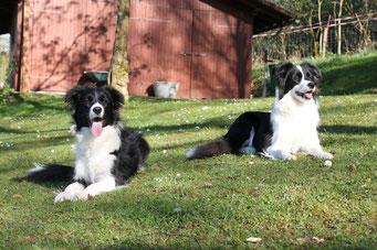 Lucy und ihre Schwester Catch