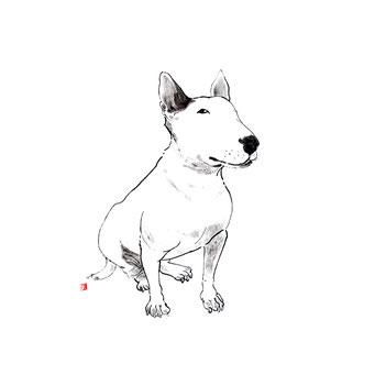 犬のイラスト ブルテリア