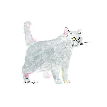 猫のイラスト ぽちゃ