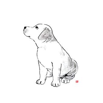 犬のイラスト ゴールデンレトリバー