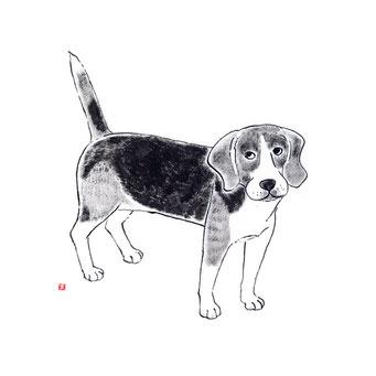 犬のイラスト ビーグル