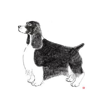 犬のイラスト エアデールテリア