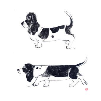 犬のイラスト バセットハウンド