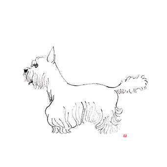 犬のイラスト ウェストハイランドテリア