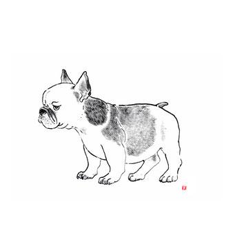 犬のイラスト フレンチブルドッグ