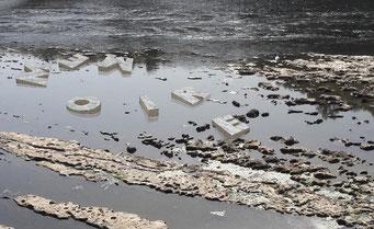 Anthropocène - installation monumentale - 2019-2020