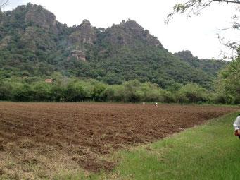 Amatlan de Quetzalcoatl