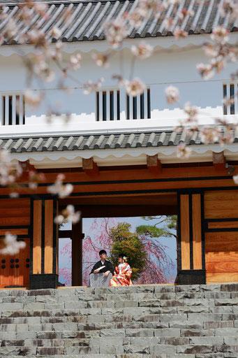 和装前撮り桜ロケーション撮影甲府舞鶴城公園で撮影門を背景に撮影
